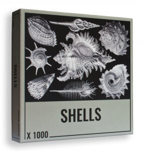 Win a premium shells jigsaw puzzle for adults
