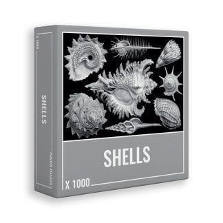 Shells jigsaw puzzle from Cloudberries